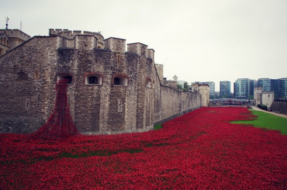 poppy installation London Tower 1