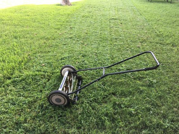 lawn-1812944_1920.jpg